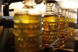 best cooking oil for selling